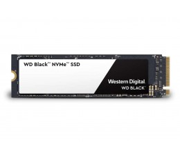 250GB M.2 2280 PCI-E SSD Black